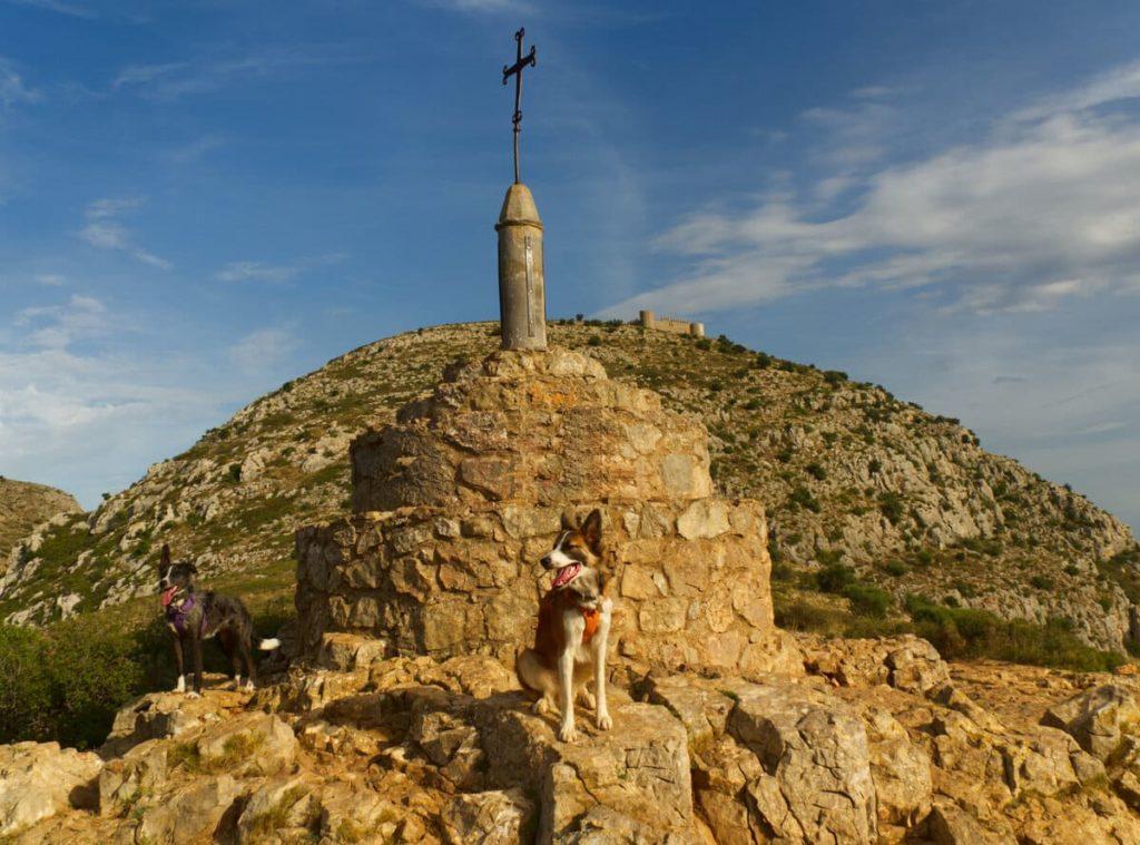 Castell de Montgrí con perro. 100 cims