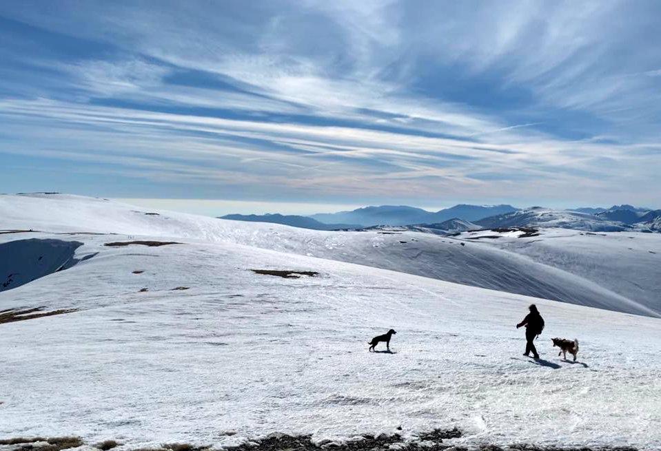 El Puigmal con perro. 100 cims